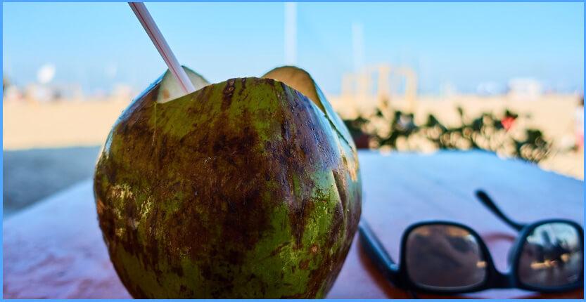 Kokosnusswasser – das kalorienarme Trendgetränk