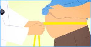 Fett ist nicht gleich Fett: Fettpolster und ihre Aufgaben